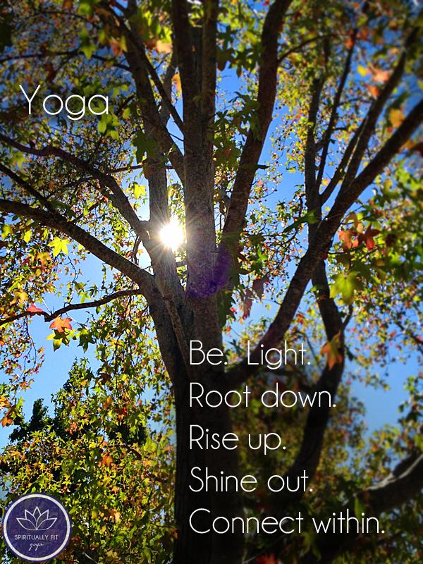 danville-falltree-yoga