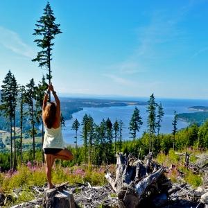 yoga, tree pose, vrksasana